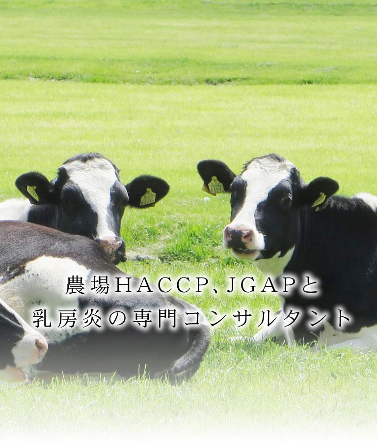 農場HACCP、JGAPと乳房炎の専門コンサルタントの赤松ファームクリニック